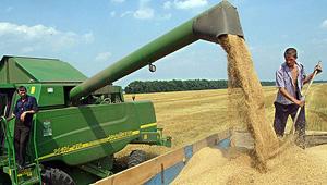 В текущем году в Украине ожидаются аграрные рекорды